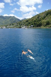 St-Lucia (7)